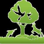 Утилизировать самостоятельно или заплатить: экологический сбор